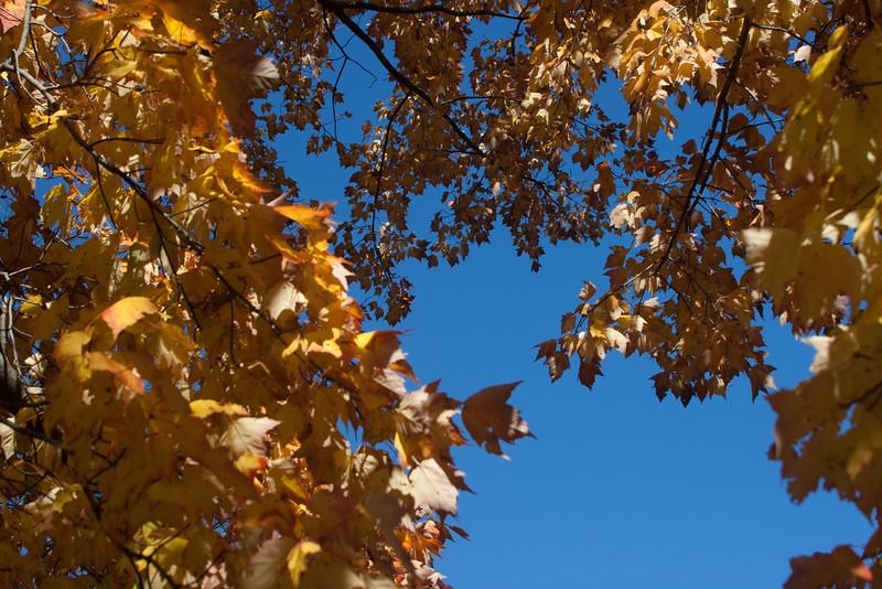 20121021-2012-10-2116-19-5113190.jpg