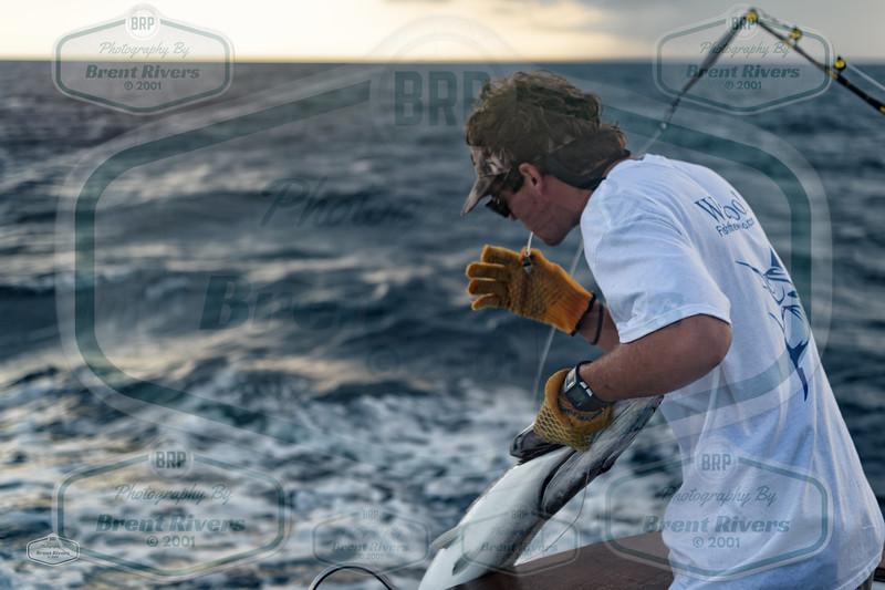 2016 Fishing the Wahoo