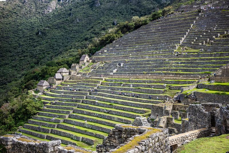 terraces Machu Picchu.jpg