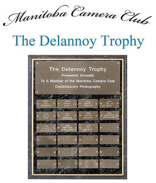 The Delannoy Trophy 4.jpg