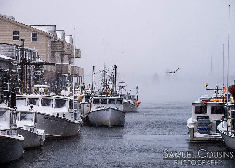 Boats docked during a snowstorm on Portland's waterfront. Low fog obscures the other side of the river.