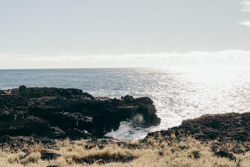 Hawaii20-117.jpg