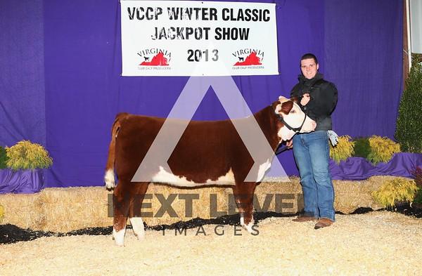 VCCP 2013 Heifer Backdrop