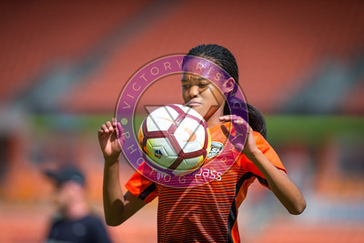 Houston Dash vs Chicago Red Stars