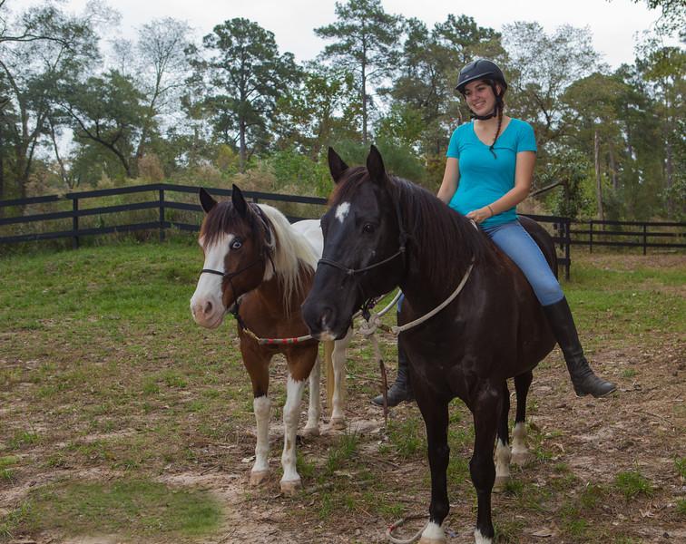 horses & staff-351.jpg