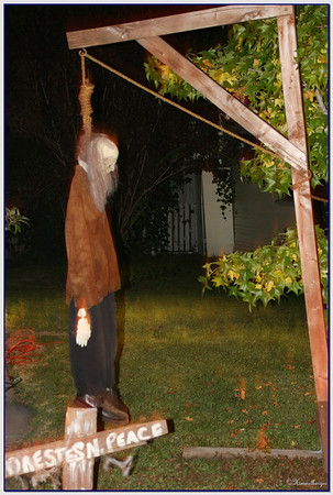 Halloween 2005 & 2006