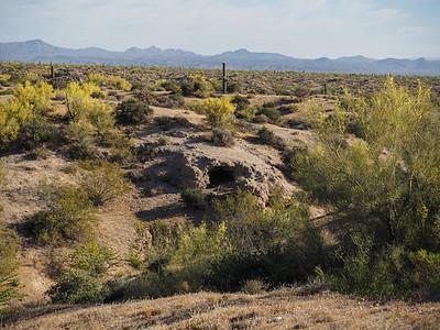 EM1 35-100 Desert 2014