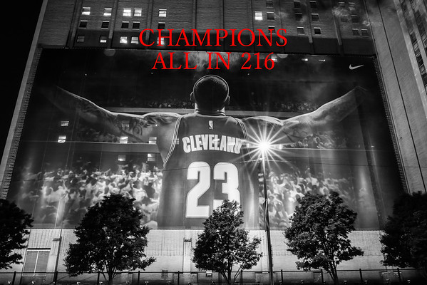 ALL IN 216