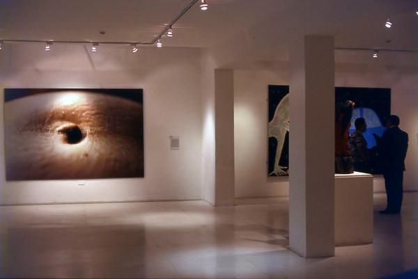Malic, Salon Arturo Michelena, Valencia, Venezuela, 1999