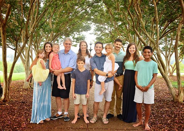 Tazza family