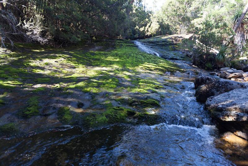 Tasmania_2015_221.jpg