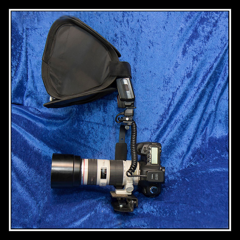 My 70-200mm f/4L IS lens and fill flash rig