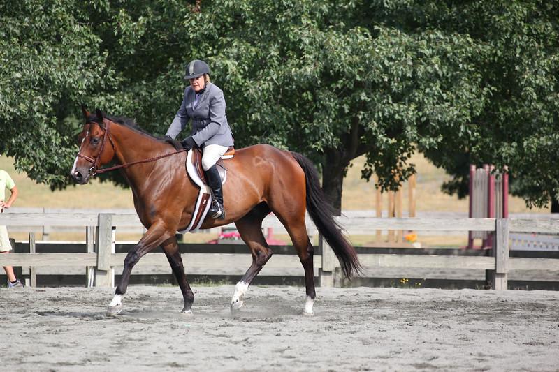 Horse Pleasure (207)