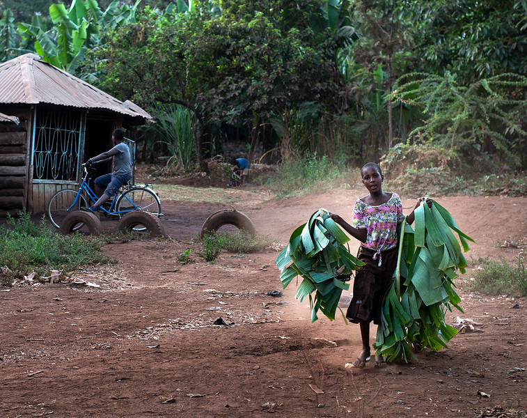 Young girl carrying banana leafs.  Mto wa Mbu village, Tanzania, 2017