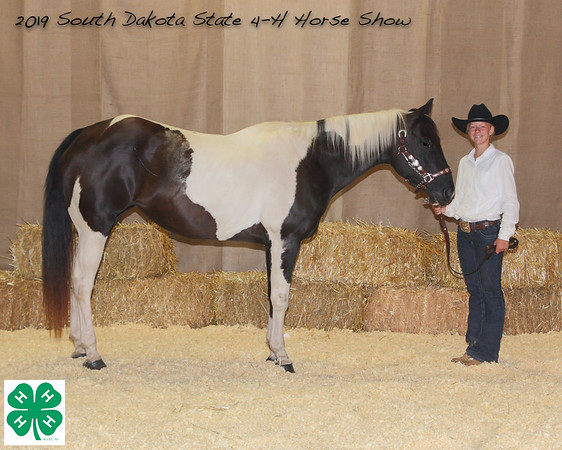 2019 SD State 4-H Horse Show