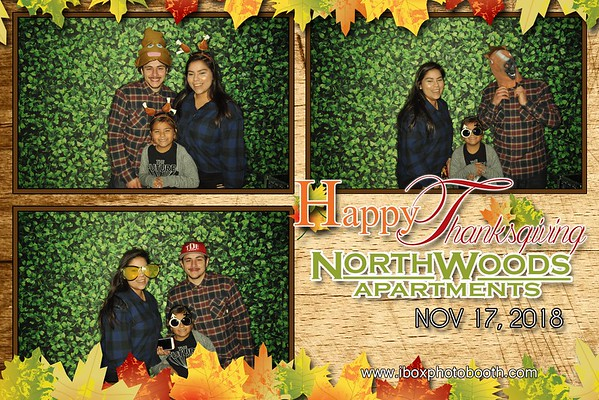 Northwoods Apartment Thanksgiving Party 2018