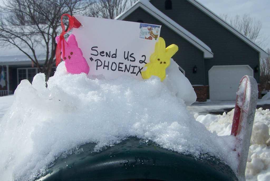 ". \""Send us 2 Phoenix,\"" by Marc Smith of White Bear Lake"