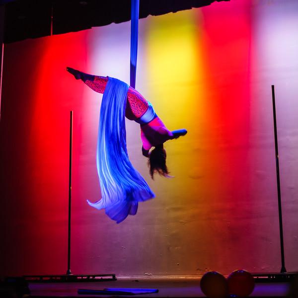 Kairos Circus Benefit-20150109-1171.jpg