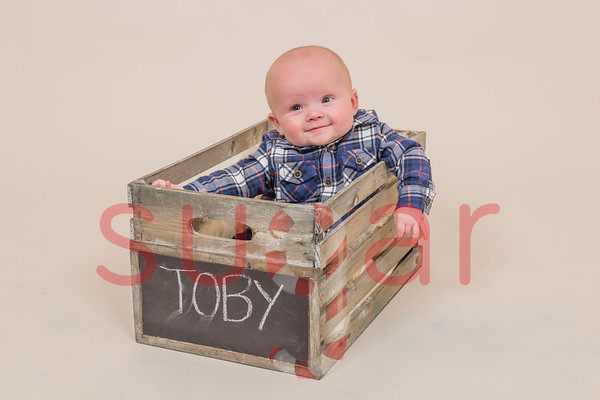 Toby's Mini Photoshoot