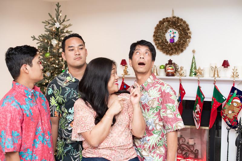 Hawaii - Christmas Family Photos-82.jpg