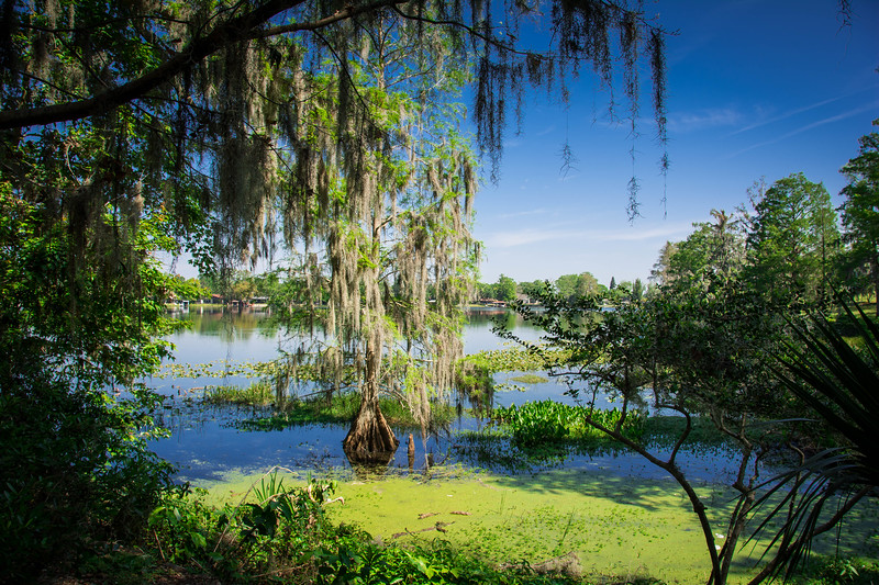 Orlando-164.jpg