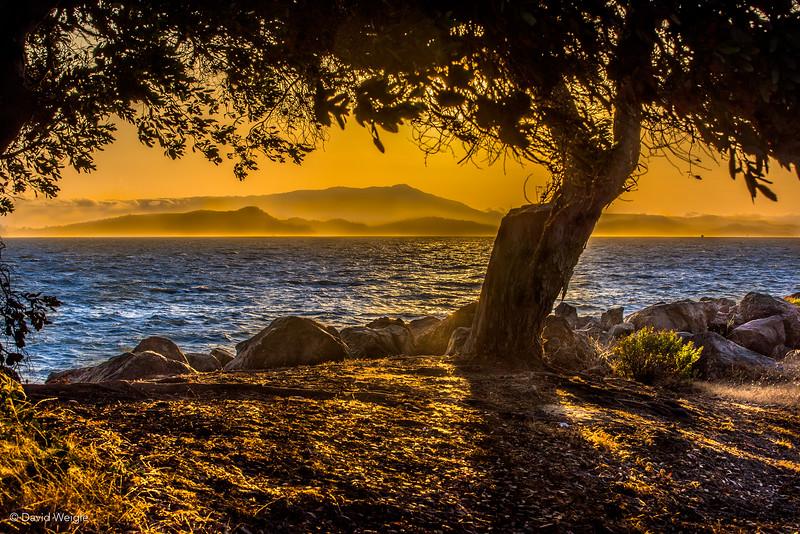 Berkely Marina Sunset-2.jpg