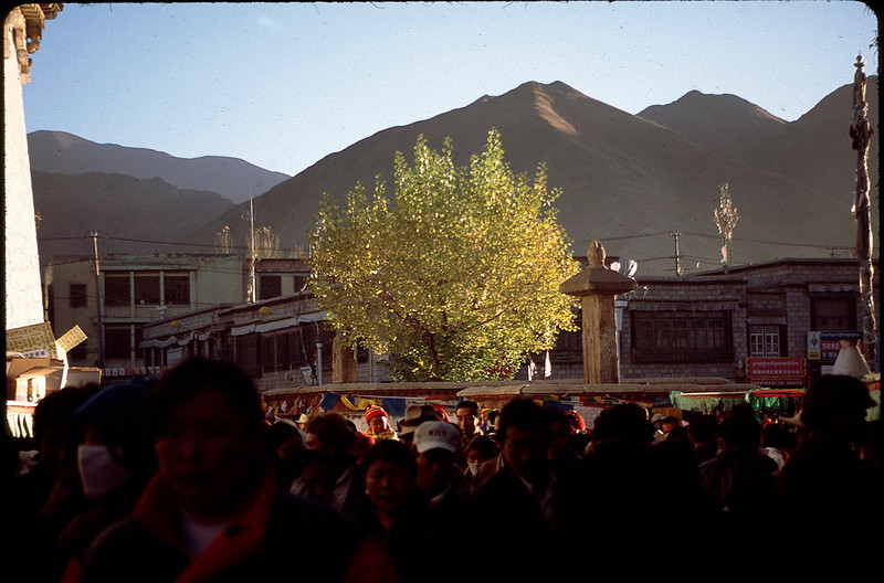 Tibet_Shanghai1_065.jpg