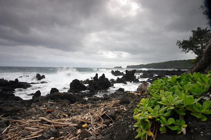 Hawaii 011.JPG