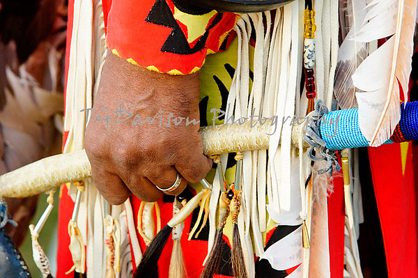 Indian Pow Wow Elk Grove Village 2013
