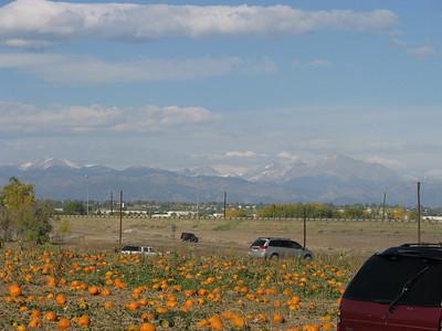 Pumpkin Patch - 10-16-2011