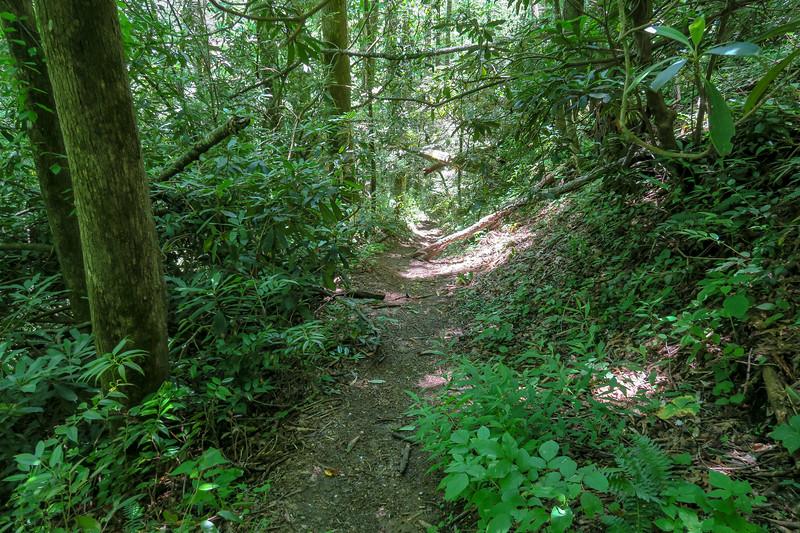 Boxcar Falls Path -- 2,450'