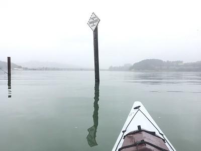 Sausalito Kayaking: Jun 8, 2017