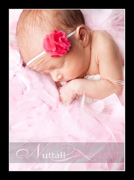 Olivia Newborn-099.jpg