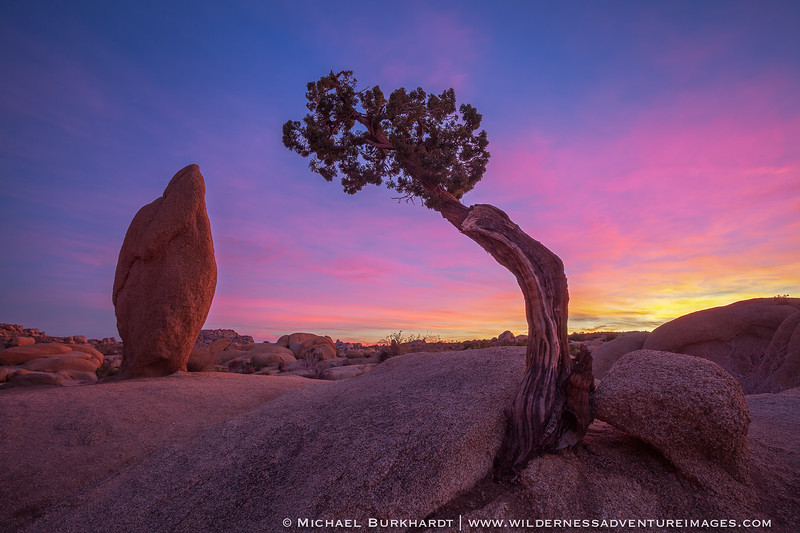 Joshua_Tree_NP_Juniper_Rock_Sunset_099.jpg