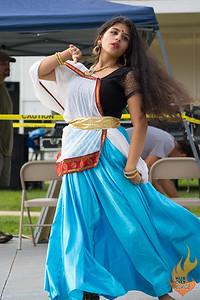 Indo-American Festival 2017