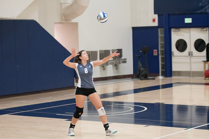 HPU Volleyball-91700.jpg