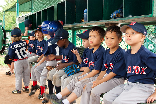 WP T-Ball - Red Sox 2013