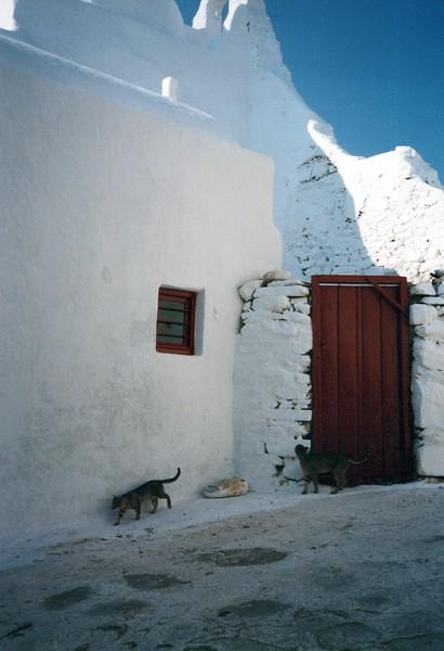 Dance-Trips-Greece_0051_a.jpg