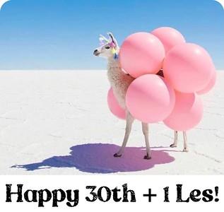 Les's 30th + 1 Birthday