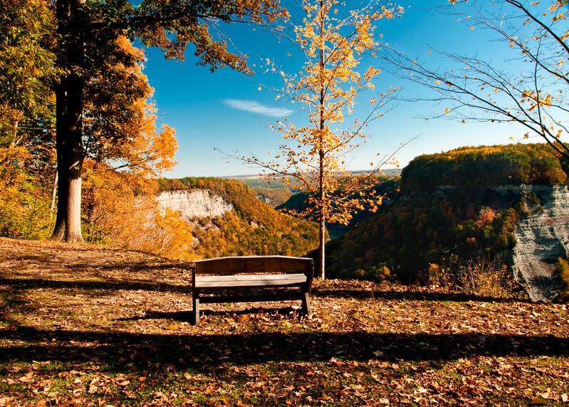 L24 Bench view.jpg