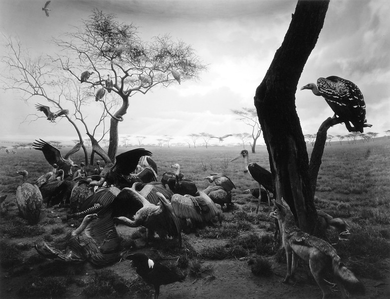 Famous Contemporary Photographers - Hiroshi Sugimoto