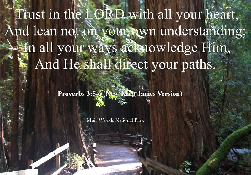Proverbs 3_5 .jpg