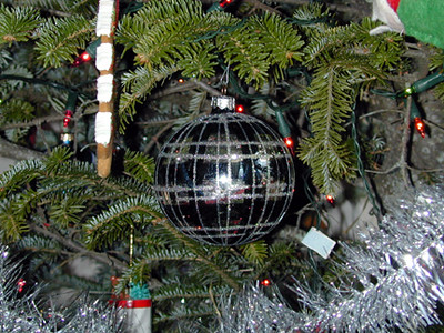 Ornament in the tree