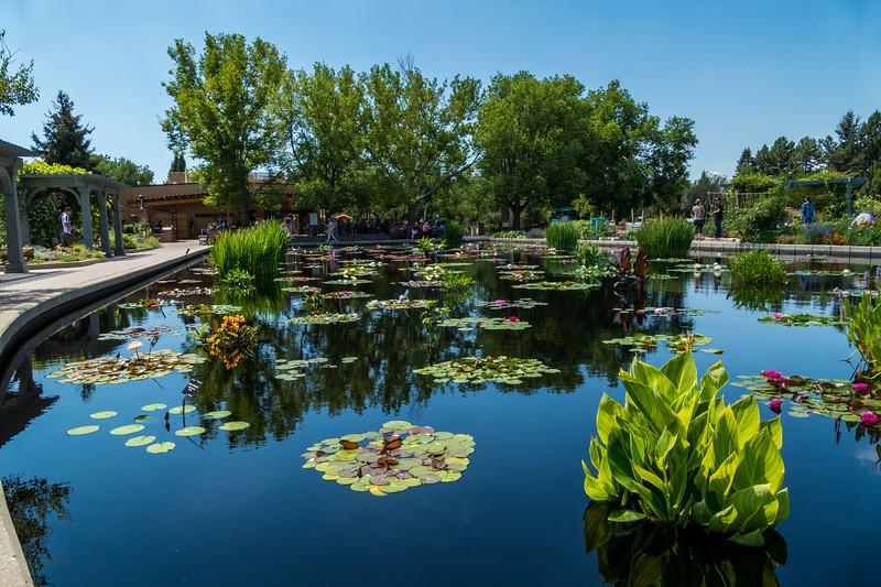 20190722_denver-botanical-garden_012.JPG