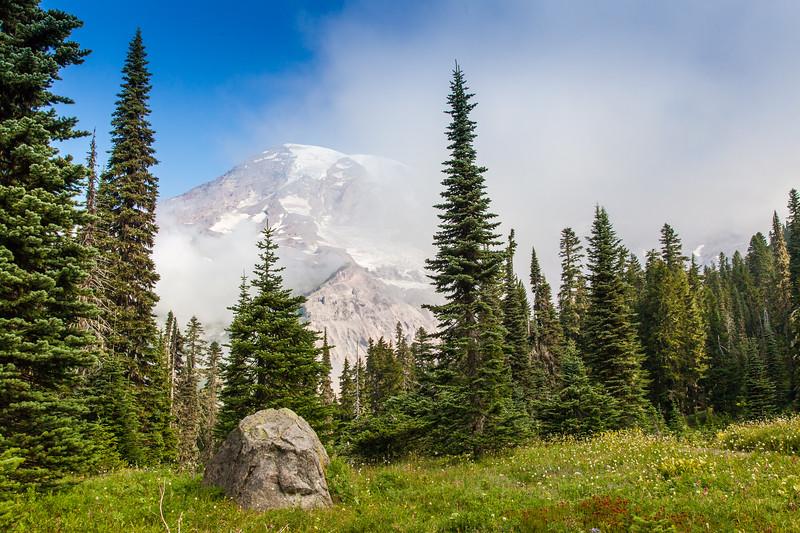 Mount Rainier from Paradise