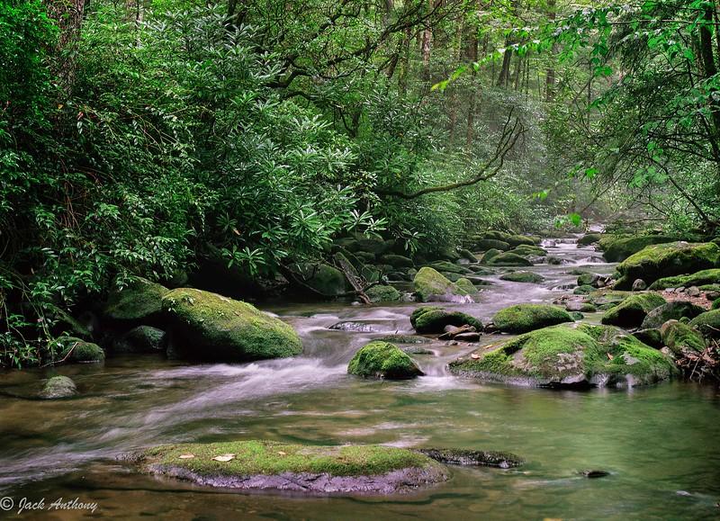 nantahala creek-h14.5x10.5.jpg