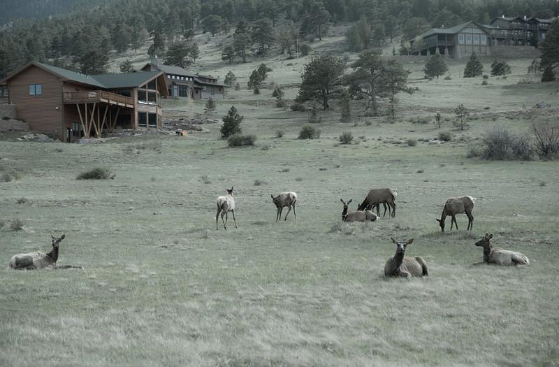 Colorado-34600.jpg
