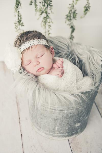 Rockford_newbornphotography_A_045.jpg