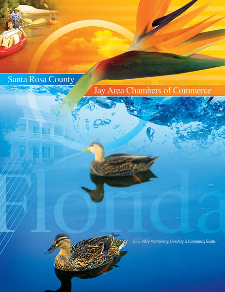 Santa Rosa NCG 2008 Cover (1).jpg