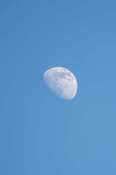 partial moon at dusk on blue sky